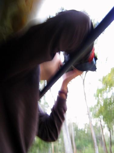 Action shot.