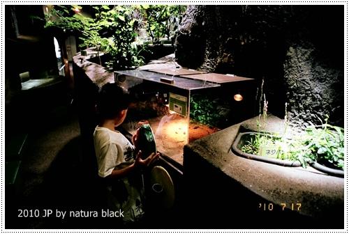 b-20100717_natura142_011.jpg