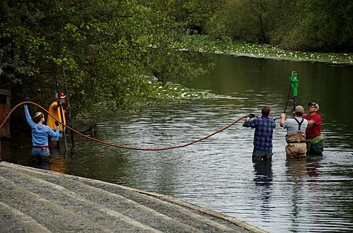 Salmon safety at Marymoor