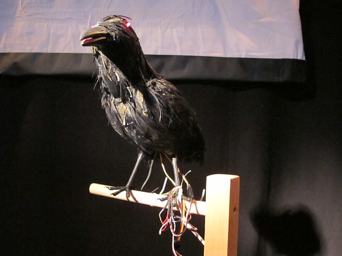 Uncanny Valley: Edgar Allen Crow
