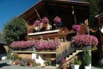 Swiss scenery & houses 005