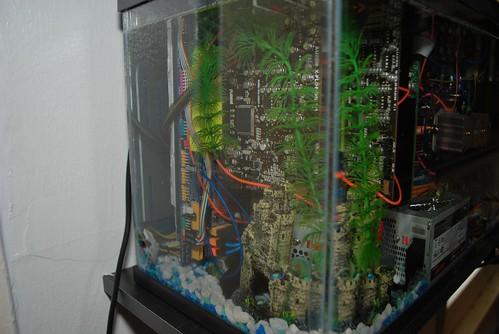 Aquarium_PC26