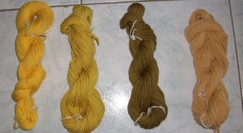 Wool Dyed with Soursob (Oxalis pes-caprae)
