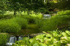 Going downstream