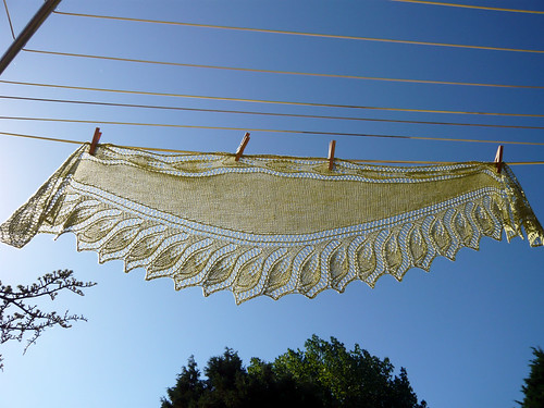 semele shawl in Sea Silk