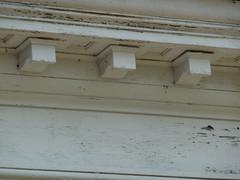 Dentil detail, Auburn