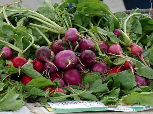jumble of radishes
