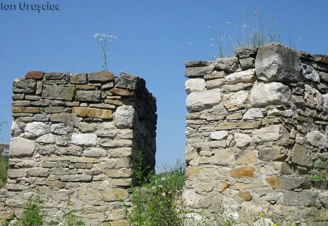 Cetatea Soroca (11)