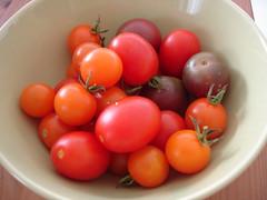 I grew these!  All heirloom varieties