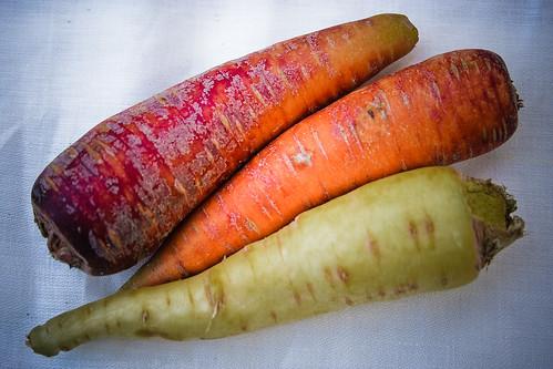 {221/365} carrots
