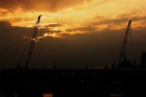 Sunset and Cranes