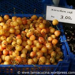 D-79539 Lörrach 7_2010 07 17_8099