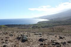 at Haleakala
