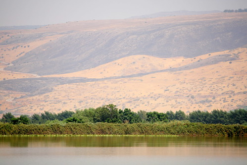 Hazy Day over the Hula Valley