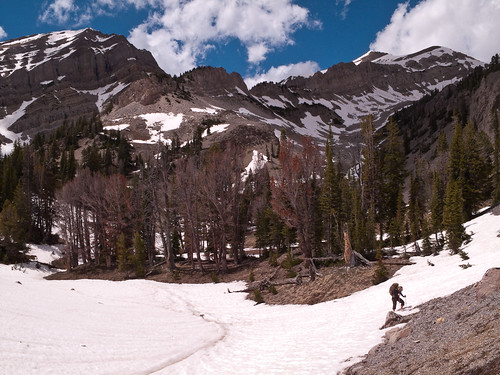 Upper Swift Creek Basin