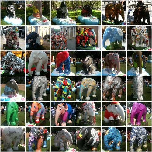 Elephant Mosaic 5