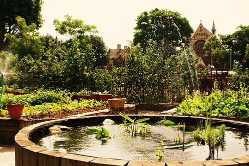 Spitalfields City Farm Garden