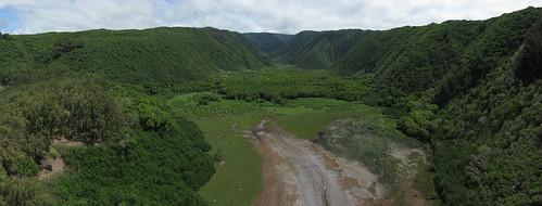 Pololu Valley Wetlands 2