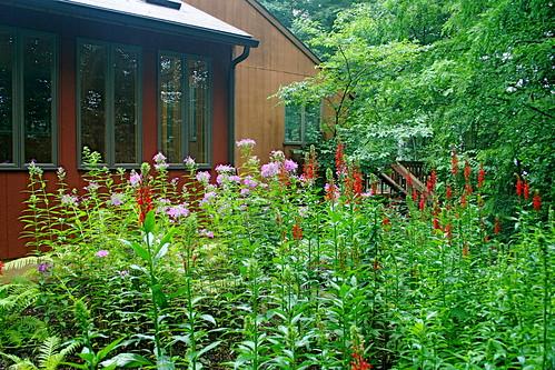 Garden at New Bolton