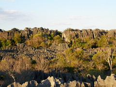 Gran Tsingy