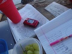 Freewriting. grapes, pen, notebook, progress....