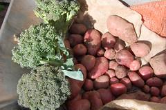 10 07 17_vegetables_0002
