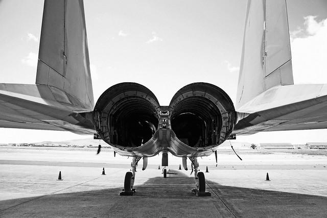 F-15 Butt