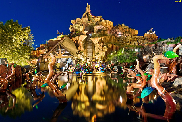 Walt Disney World - Splash Mountain Night Photo