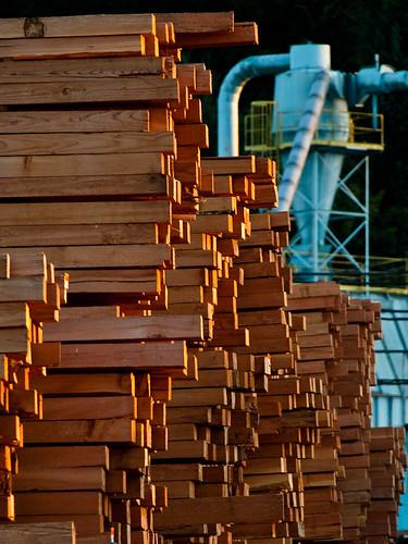 Lumber at Sunset