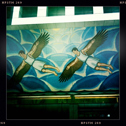 Financial Icarus