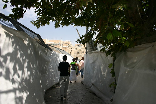 Ascending the Temple Mount