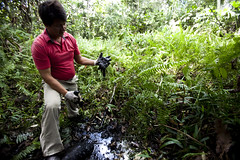 Chevron's Toxic Legacy in Ecuador's Amazon