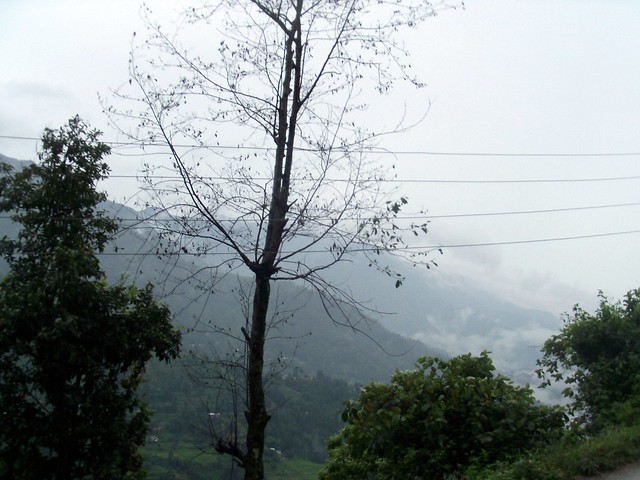 bus to Pokhara (or not)
