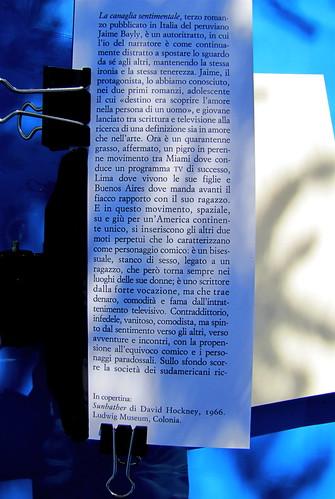 Jaime Bayly, La canaglia sentimentale, nella traduzione di Maria Nicola, Sellerio 2010, [resp. grafica non indicata], risvolto di cop. (part.), 1