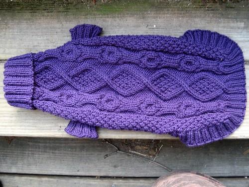 1122 Golly's Purple Coat