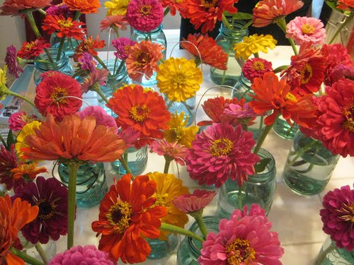 flowers on the kitchen table, being made into arrangements