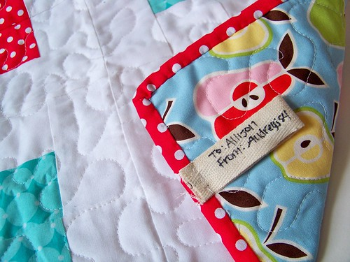 alexander henry fruit fabric mini quilt backing and polka dot binding