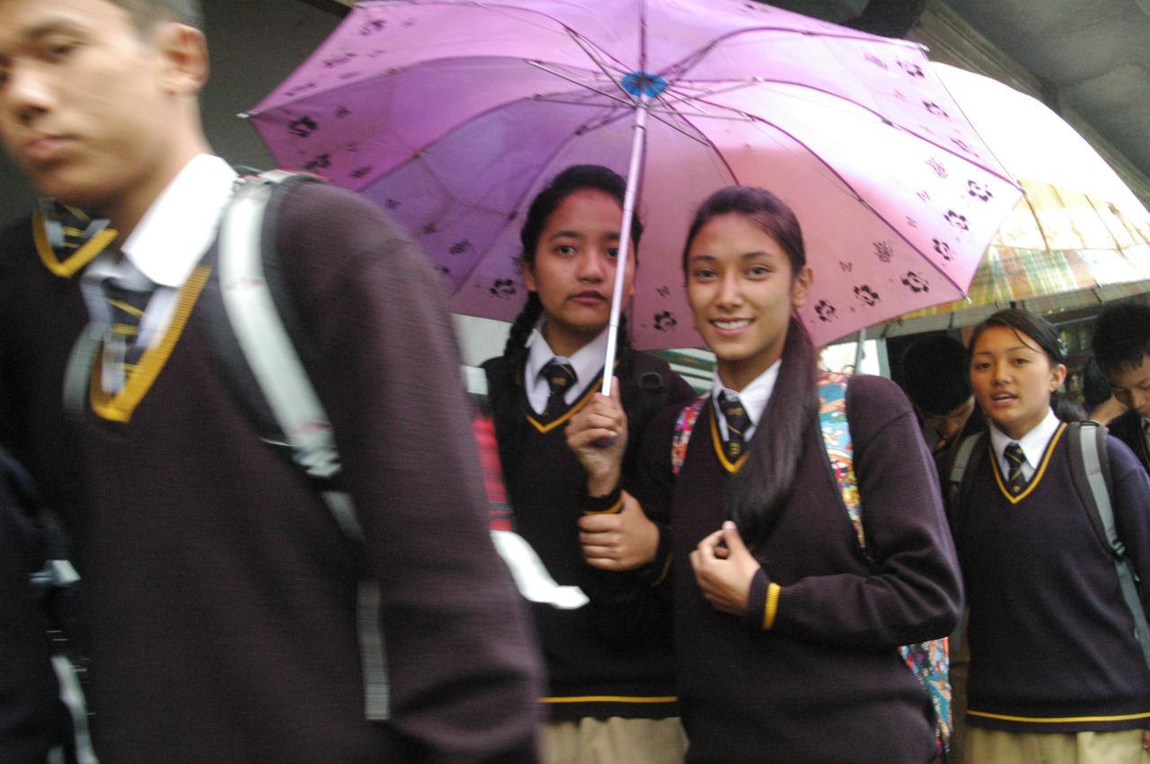 Come, squeeze in  - Darjeeling, W Bengal, India