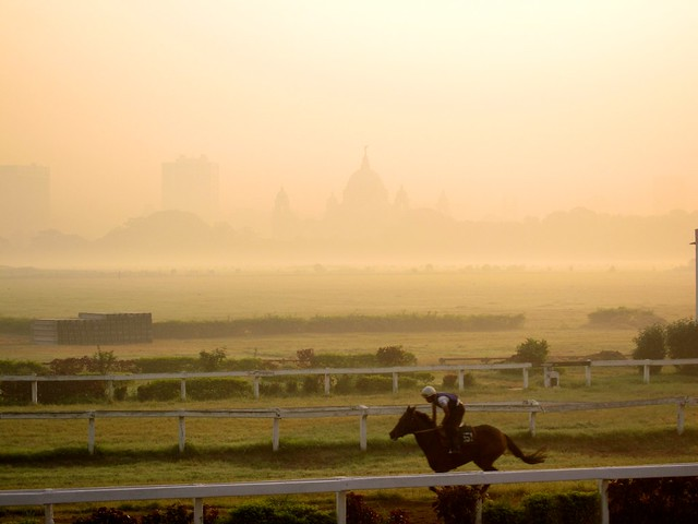 Calcutta - Morning Trackwork