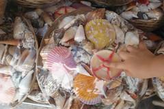 Naxos: Strandträume