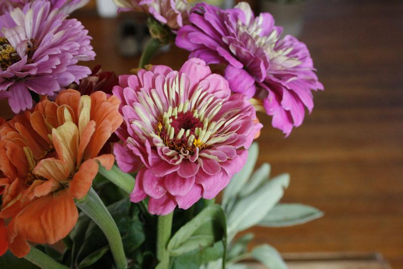 farmer_flowers