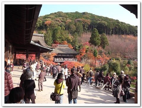 京都_清水寺1