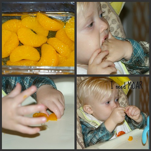 moar oranges