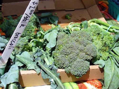 sunny broccoli