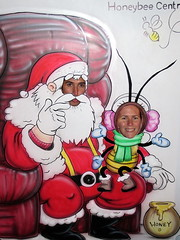 Santa and His Little Bee