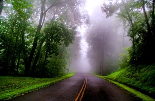 A Misty Summer Morn