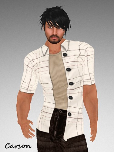 MHOH4 # 34 - Eclectic Firefly Plaid Overshirt and Taupe Wifebeater