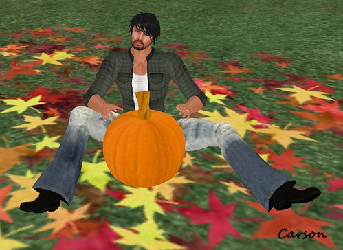 Fox Fall Groundcover aDORKable Poses Subscribo Gift Pumpkin