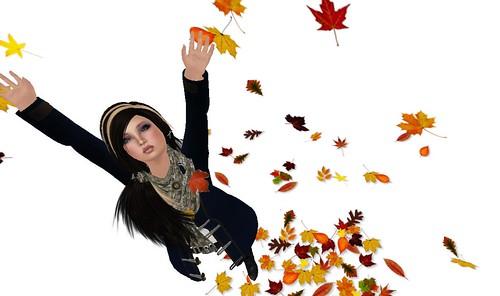 Falling leaves.