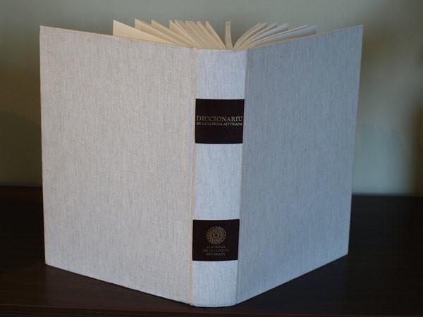 diccionariu de la academia de la llingua asturiana